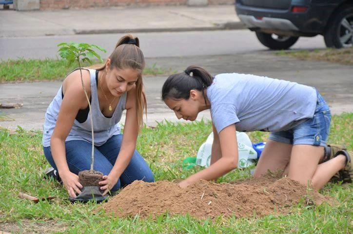 Directrices para una arborización exitosa en Santa Cruz de la Sierra