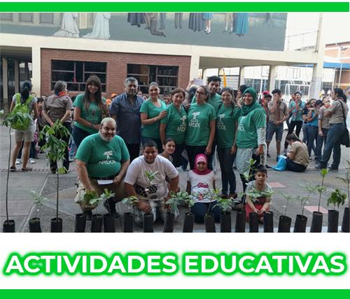 Actividades Educativas - Colectivo Árbol