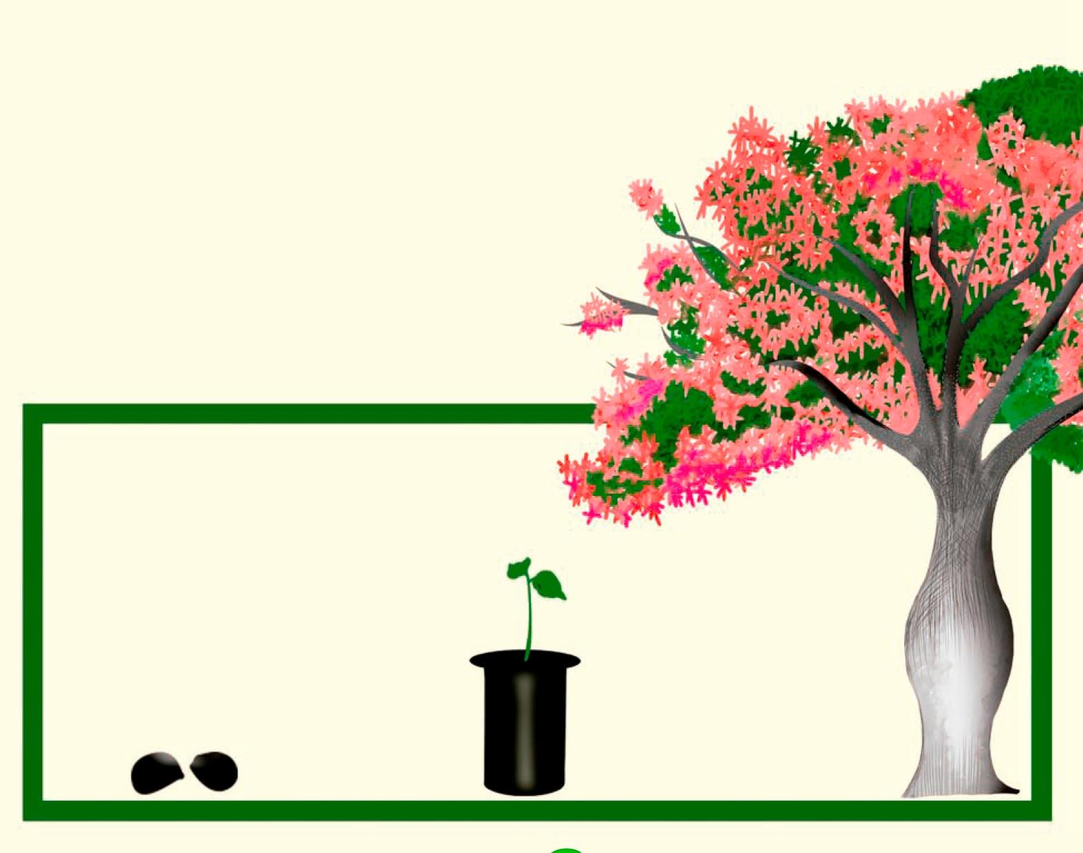 Manual de reproduccion-Toborochi rosado