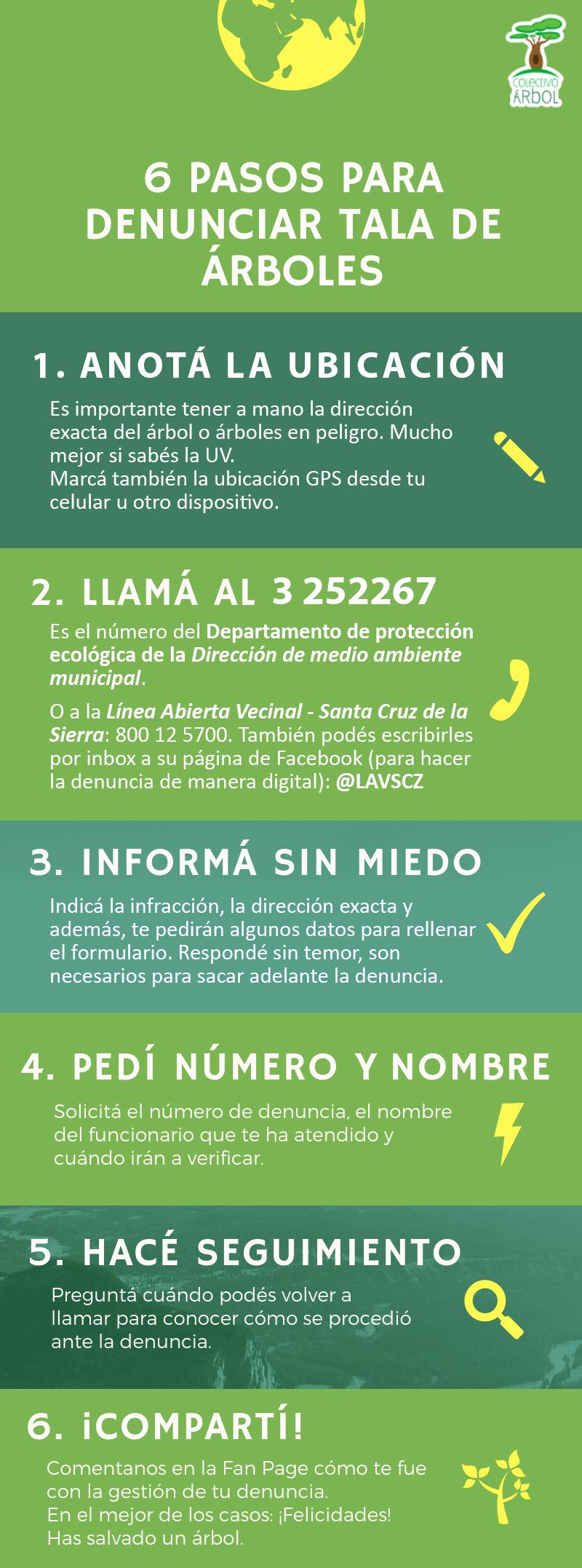 Cómo realizar denuncia de tala de árboles en Santa Cruz de la Sierra Bolivia